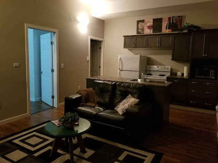 2 Bedroom Apartment Souris #2