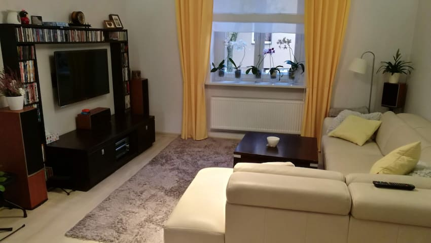 IEM, IGF, WUF11  Comfy Apartment
