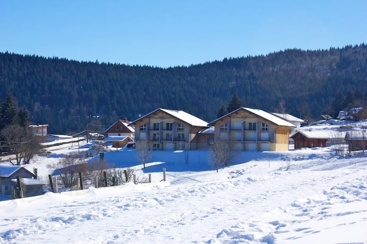 Apartment with 2 bedrooms in Xonrupt-Longemer - 10 km from the slopes