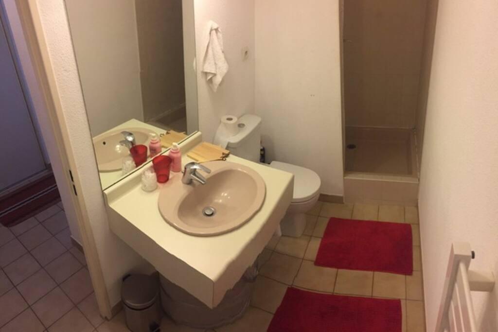 Salle de bain (à droite de l'entrée)