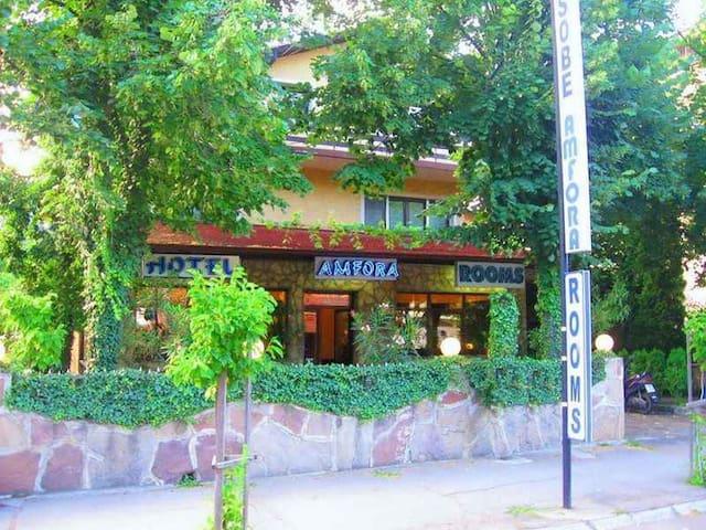 Hotel Amfora  no.132