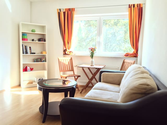 Bright Room near the Herrngarten - Darmstadt - Appartement
