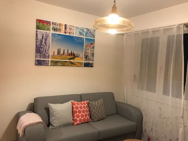 2 rooms furnished apartment in Riehenring, Basel
