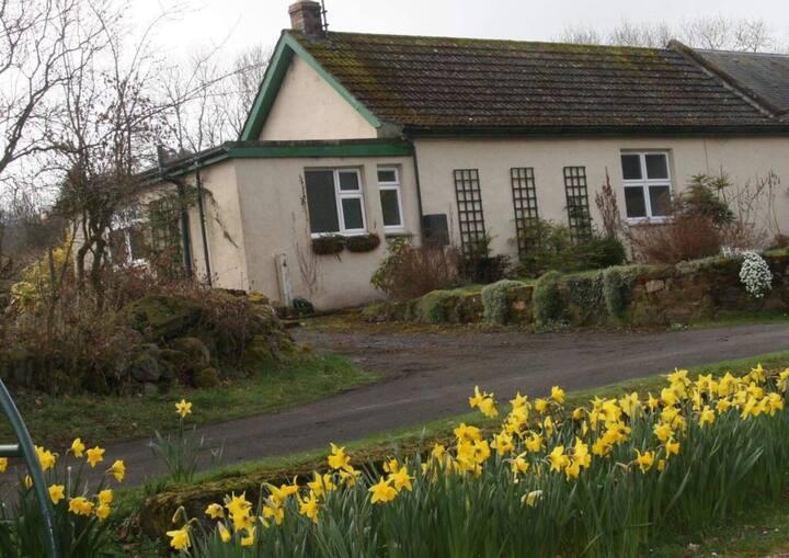 Pretty cottage in conservation village