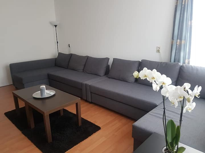 Cozy House in the City Centre,Free private parking