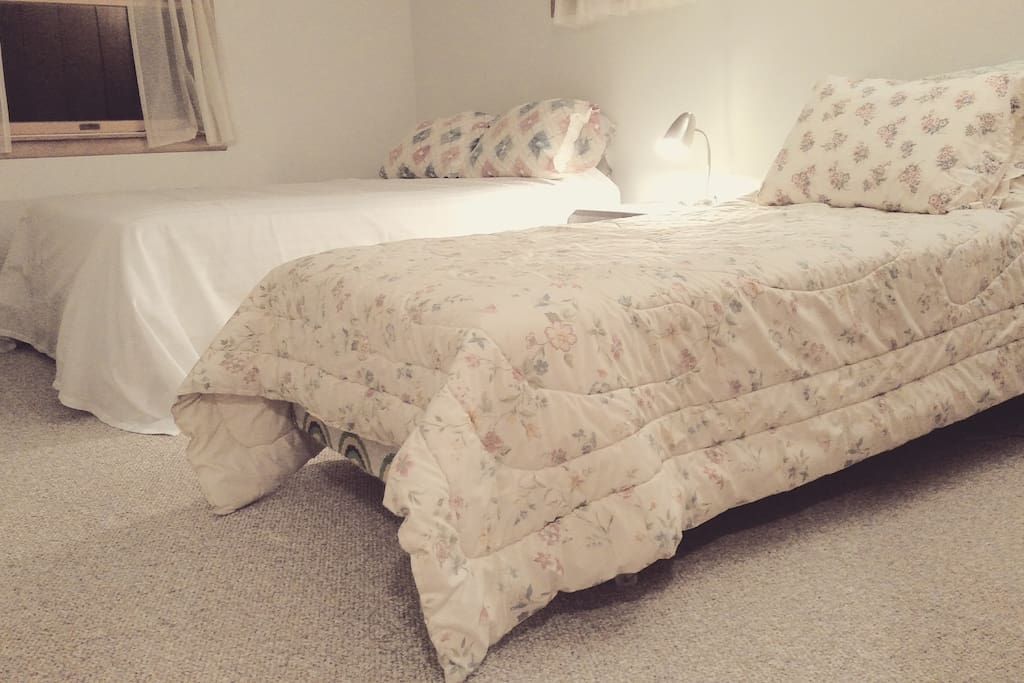 North bedroom: Perfect for the kids, families, or friends. One queen bed and one twin.