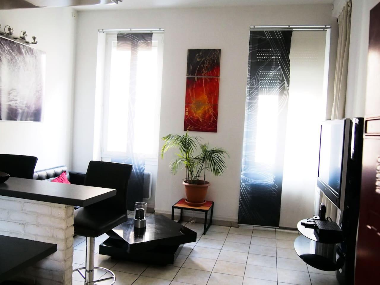 Salon, canapé en cuir. possibilité de mettre un matelas qui est rangé dans  l'appartement.