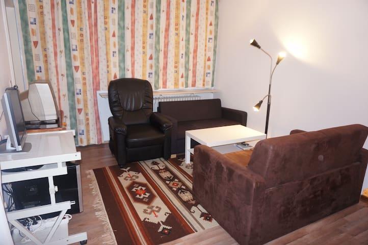 Квартира 3 комнаты на 4 человека - Bischofsmais - Apartmen