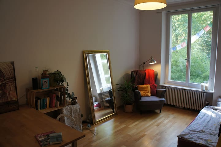 Your own cozy apartment in the heart of Bern - Bern - Wohnung
