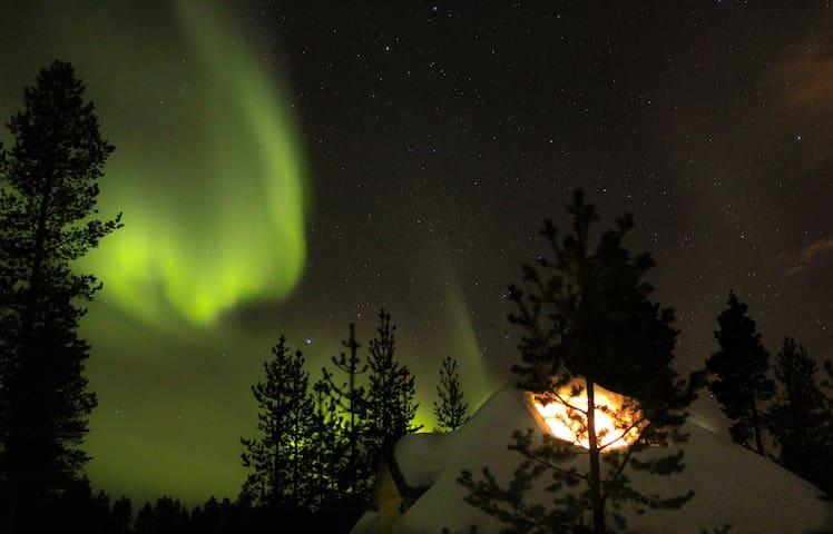 Aurora husky hut - Inari - Alpstuga