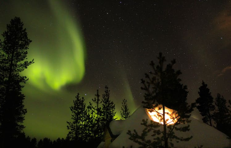 Aurora husky hut - Inari - Chalet