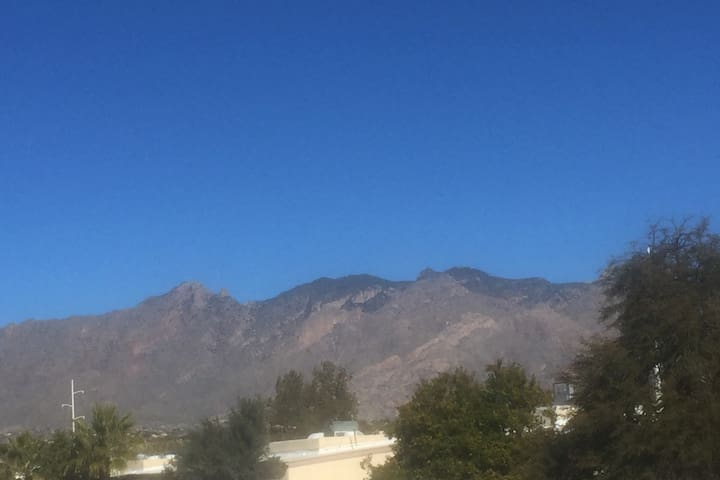 Upstairs B/R View of the Catalinas