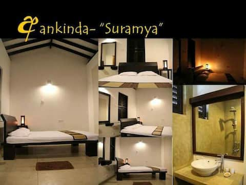 Ankinda luxurious Eco in Panadura