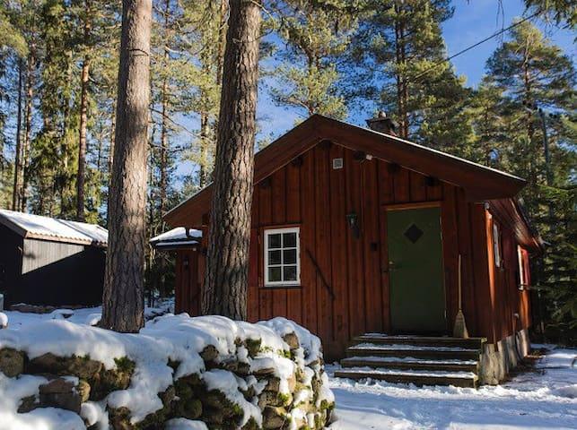 Charming cabin in Nordmarka