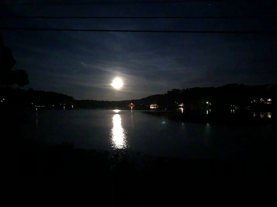 Lake Dixie Springs by moonlight