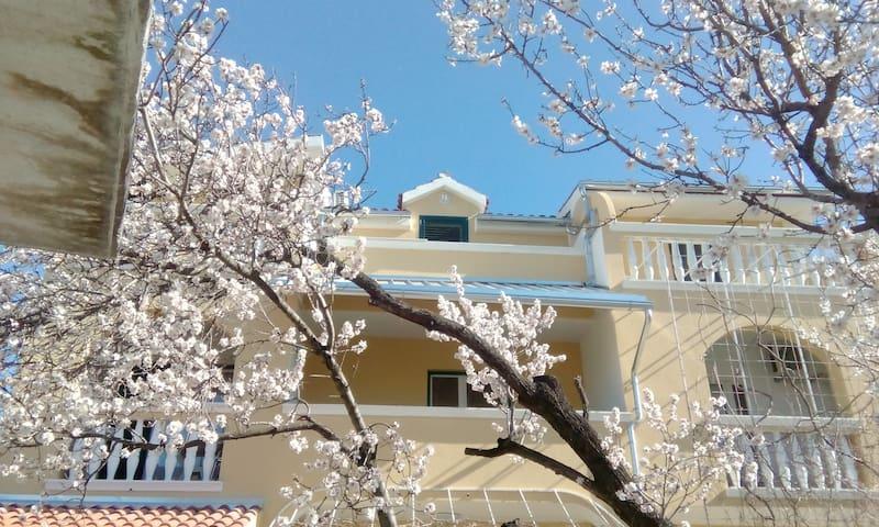 Apartments Meri & Josip - Vodice - Byt