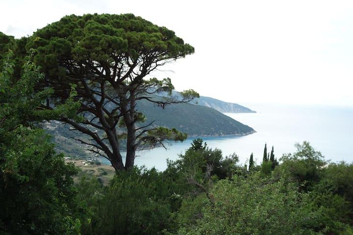 Myrtos View