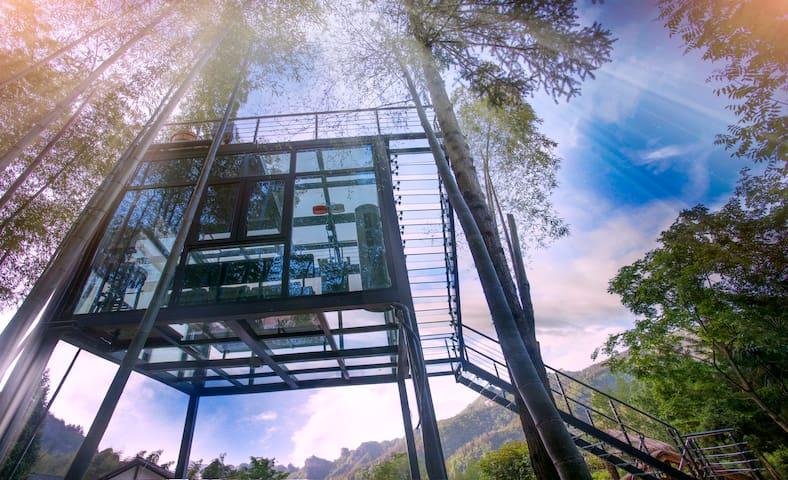 【八戒】张家界国家森林公园/阿凡达/全景玻璃屋/免费停车