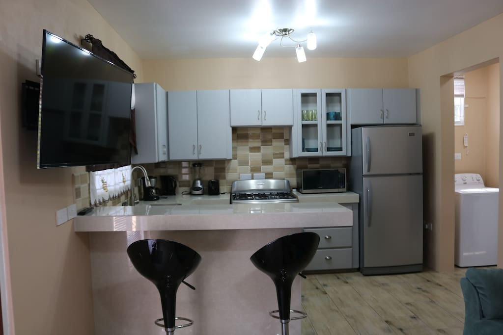 Dining counter and kitchen