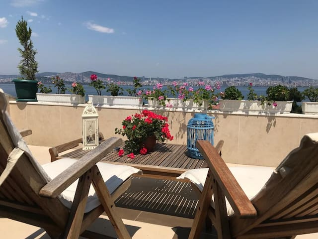 Terrace with amazing view over flowers. You can sunbathe, listen to music, drink something, read your book. Very calm and peaceful