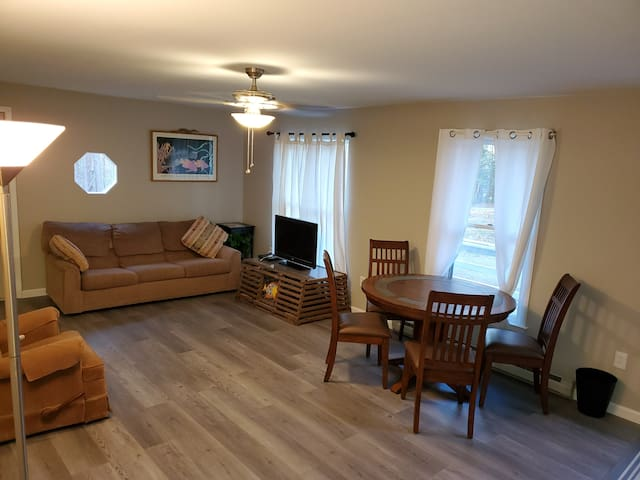 NEW extended renovated living room