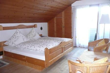 Großzügige Gästezimmer - Geheimtipp - Horb am Neckar - Wohnung