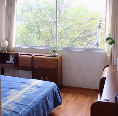 Excellent place to stay in the Center of Coyoacán