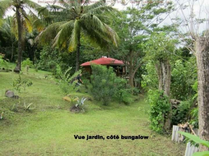 Au vieux manguier bungalow chaleureux pour deux