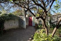 Lemon Tree Studio in the CBD of Stellenbosch
