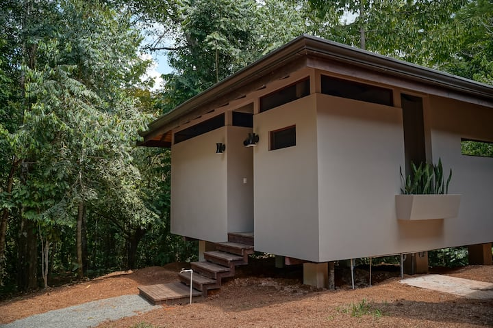 Waterfall Bungalow in Pre-Historic Jungle
