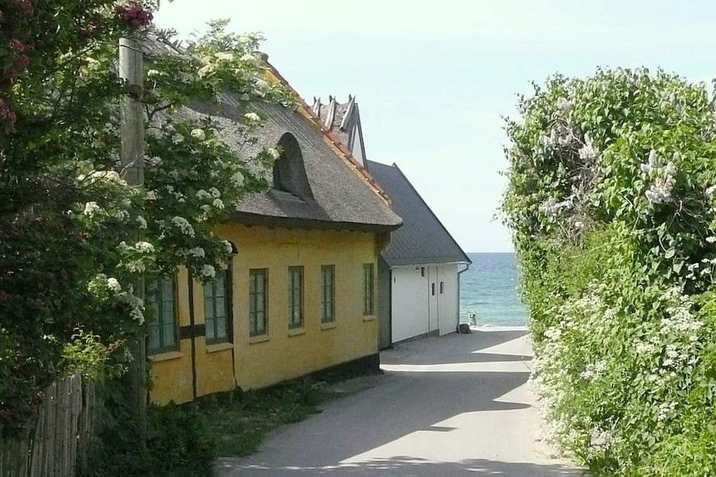 Kikhavns idylliske gule huse med badestranden i baggrunden