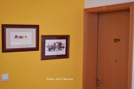 Studio apartment - Kobarid - Appartement