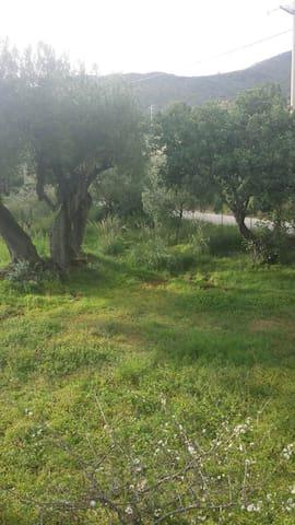 Porzione di villa immersa nel verde - Marina di Camerota - วิลล่า