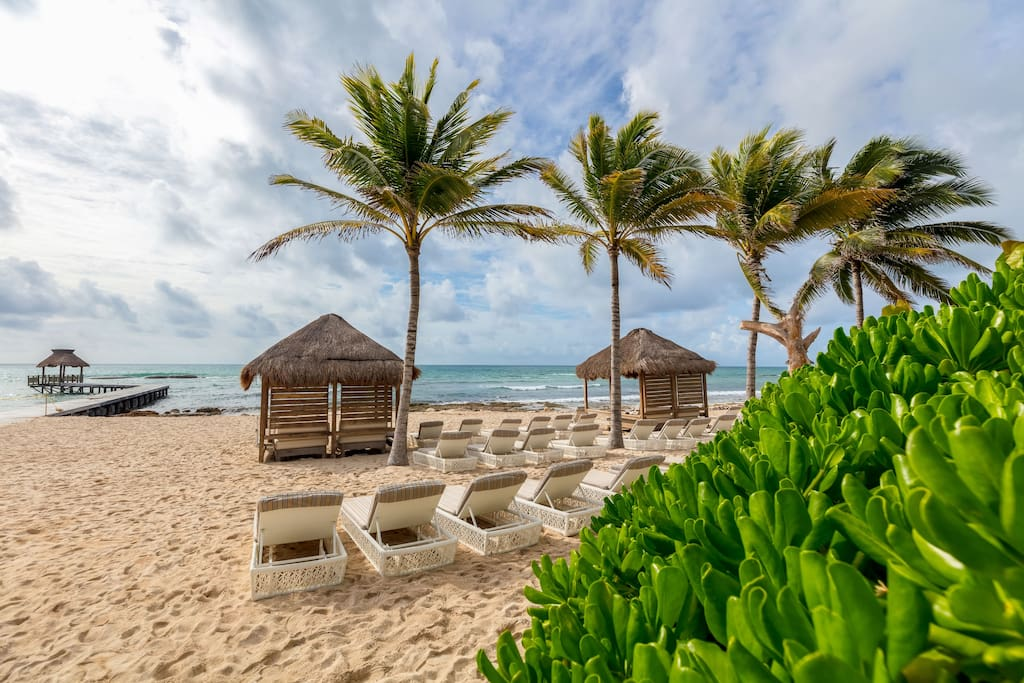 Swaying palms, soft sand, and lounge chairs for enjoying the view.