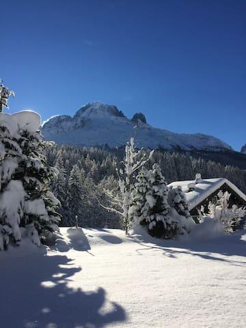 Beau studio avec vue Mont-Blanc