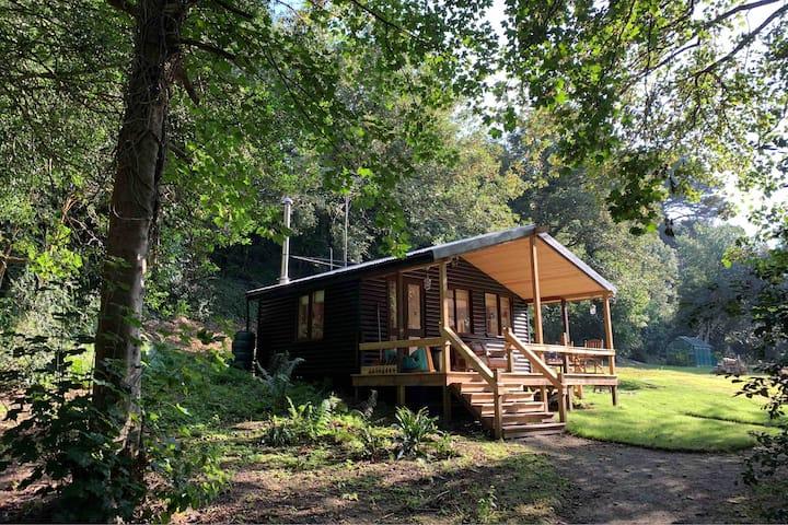 The Little Black Cabin