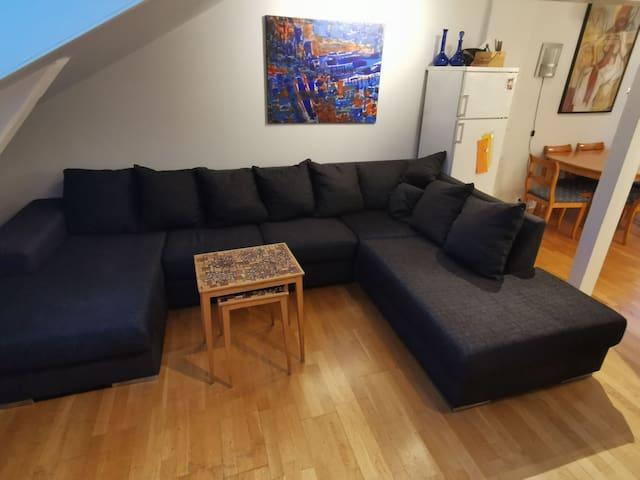 Praktisk leilighet på Grønland/Tøyen