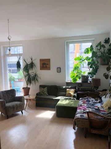 Cozy Green Apartment in Mannheim Neckarstadt