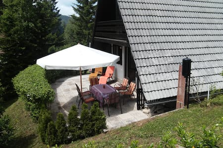 Hugo's house - family friendly close to Ljubljana