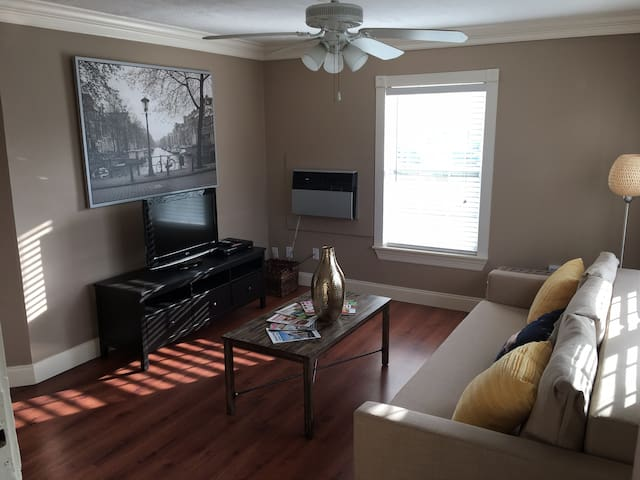 Cozy 1 BR apartment in the heart of Montrose - Houston - Apartment