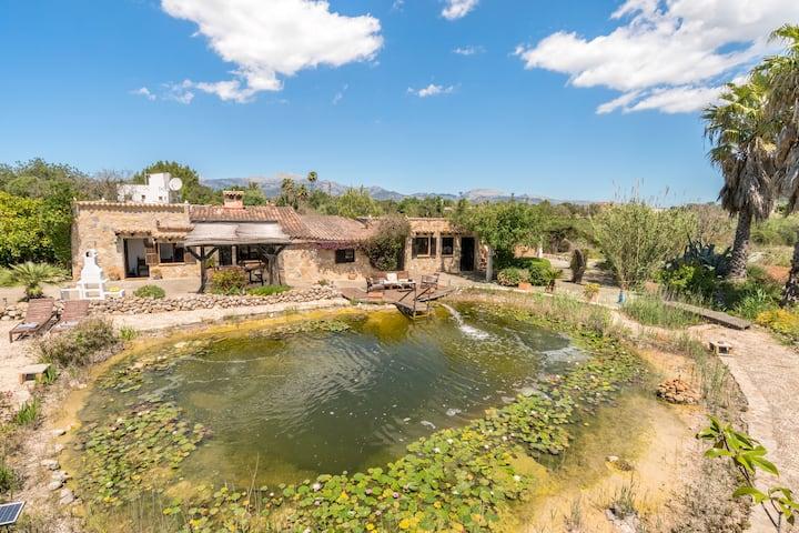 Casa Marjos, un oasis de tranquilidad y belleza