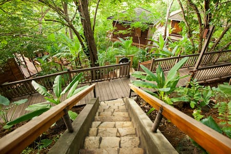 Forest View Treehouse Studio - Tola - Treehouse