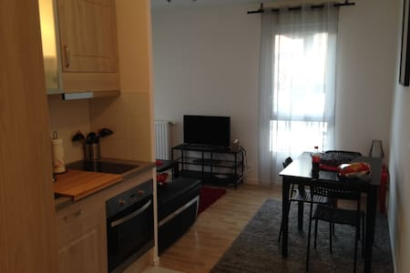1 bed-room fully furnished brand new apartment - Cergy