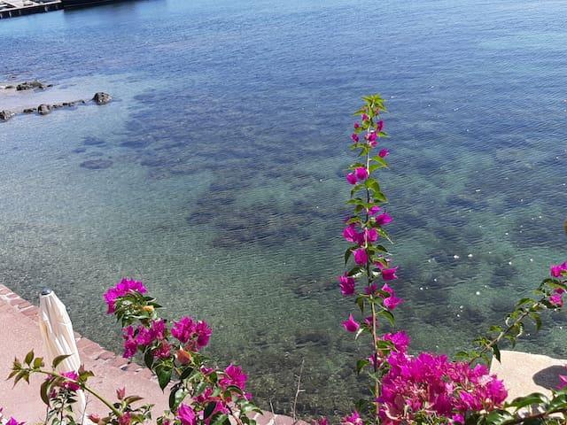 """Sardegna, Isola privata, """"la zia dell'isola Piana"""""""
