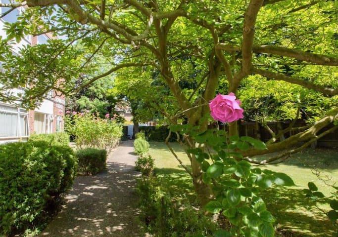 Friendly, creative space, Zone 2 Parking & Gardens