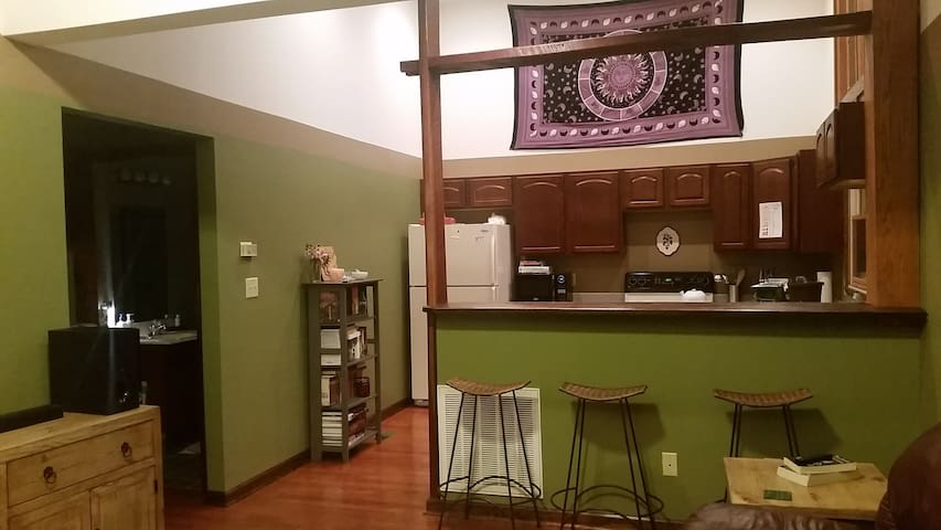 A Cozy 1 Bedroom Near Downtown Knoxville - Knoxville - Apartment