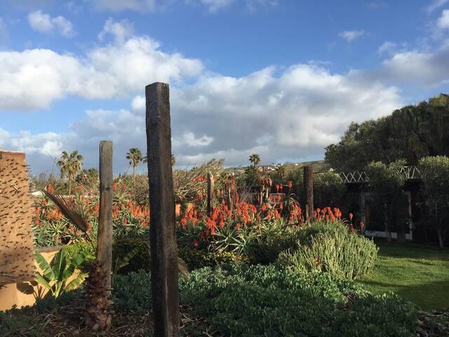 Zen Garden Suites close to Ocean and Wine Valley