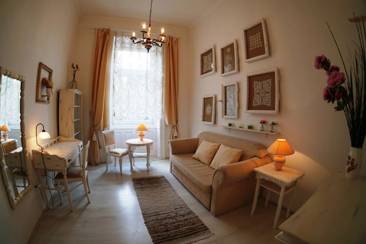 Cozy Vintage Apartment
