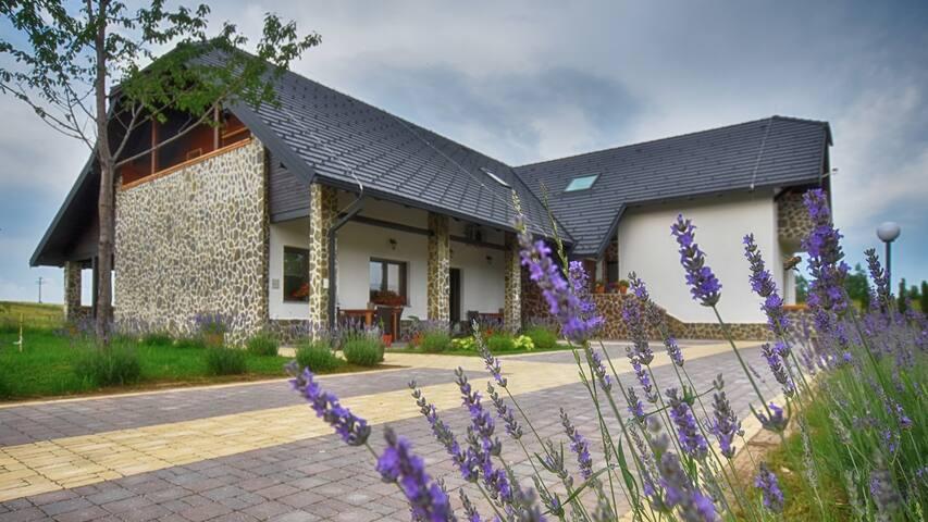 Villa Stone(Maple)**** - Rakovica - วิลล่า