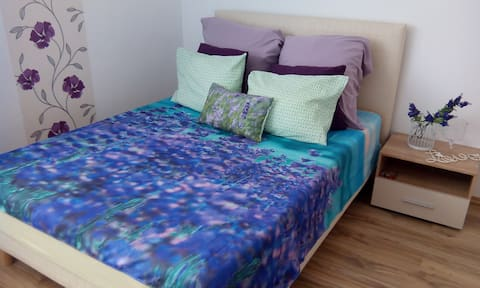 Otopeni Airport Apartment Just Cross from Airport